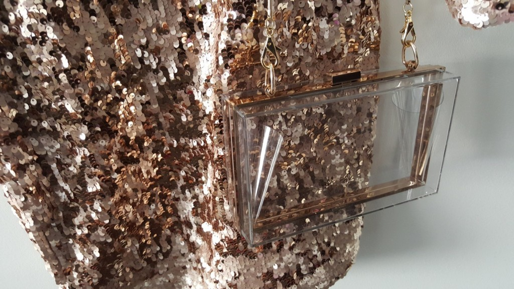sequin style_transparent clutch