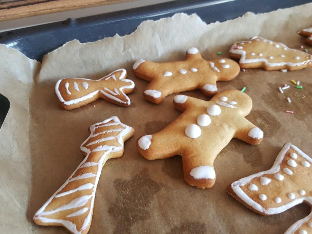 homemade-cookies-fgal